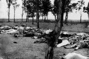 اظهارات بانیان نسل کشی ارمنیان :ما سه چهارم از جمعیت ارمنیان را نابود کرده ایم و دیگر ارمنی باقی نمانده است