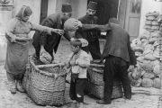 ارمنی هایی که از نسل کشی نجات یافته اند: