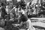 نسل کشی ارمنیان در اسناد و مدارک دانمارک