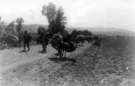 ایساک یونانسیان:اولین کشوری که نسل کشی ارمنیان را محکوم کرده خود ترکیه می باشد