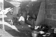 تاریخ،فراموشی،و انکار:روشنفکران ترکیه و کشتار ارمنیان عثمانی