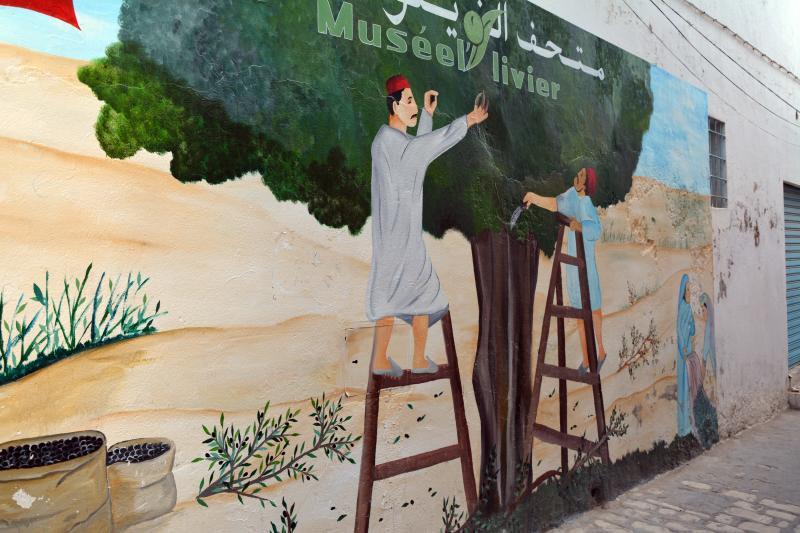 درخت زیتون 4000 سال قبل از میلاد مسیح از ارمنستان به فلسطین آورده شد و در کشورهای مدیترانه و شمال آفریقا گسترش یافت.